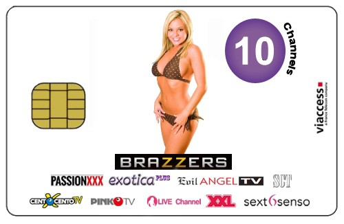 SCT Satisfaction Television 10 Sender 1 Jahr Viaccess inkl. Brazzers TV