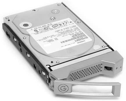 HGST G-Technology G-Speed Spare 1000 (Enterprise-Class) drive und carrier 1TB Festplatte 0G01909